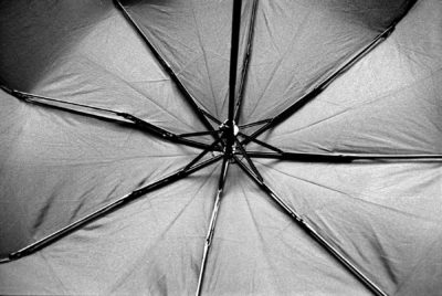 Black and white image of an umbrella shot on 35mm film.